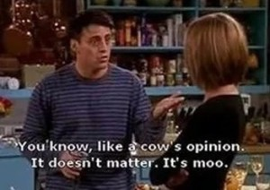 cows opinion